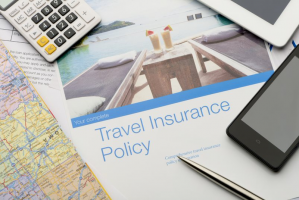 Procurement Challenges Facing the Travel Insurance Industry